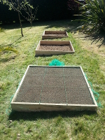 potager-carre-article